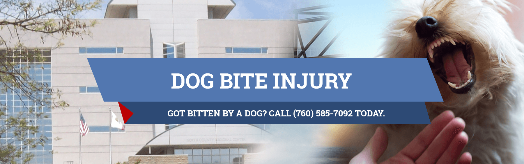 Dog Bite Law In California